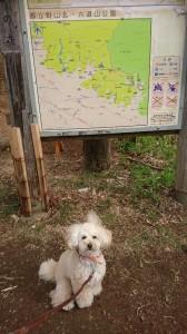 くう野山北公園