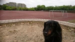 りき宝野公園