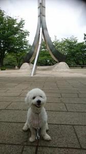 くるみ府中公園④
