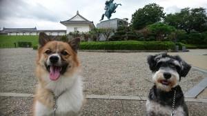 うらライム霞城④